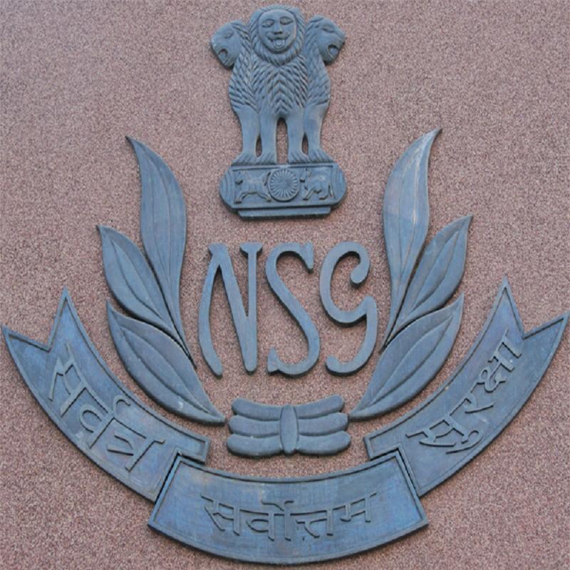 1. NSG_logo